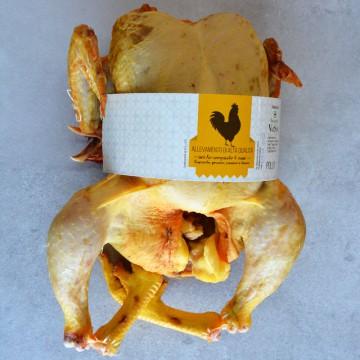 Pollo locale
